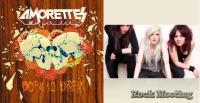 THE AMORETTES -  Born To Break