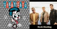 The STRAY CATS - 40