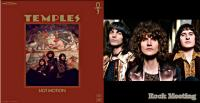 THE TEMPLES  - Hot Motion - Album psyché ! La chronique