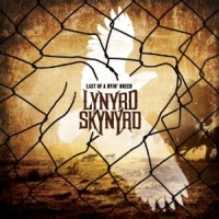 LYNYRD SKYNYRD Last Of A Dying Breed