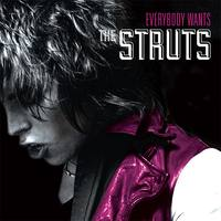 THE STRUTS  Everybody Wants